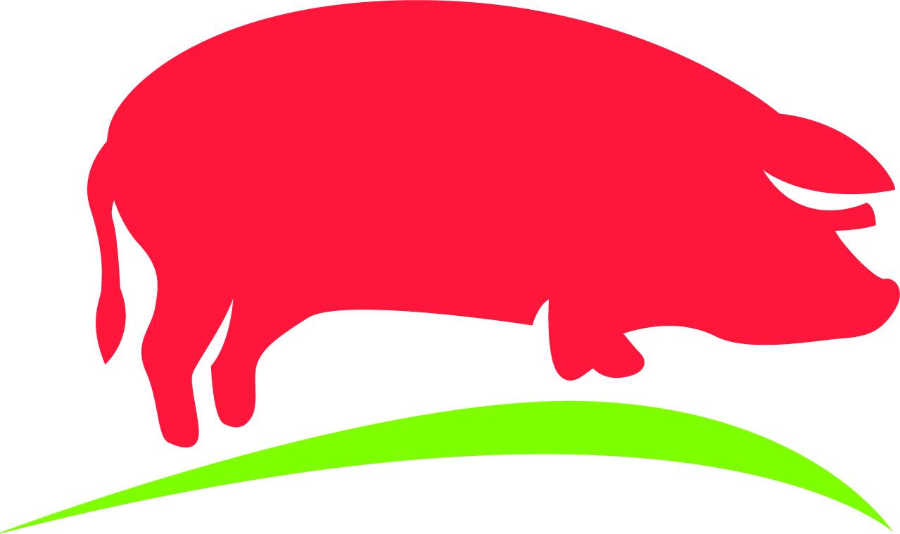Славянский продукт: выращивание свиней, производство свиного мяса, комбикорма